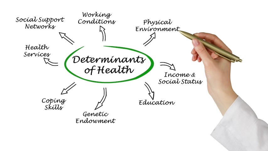 Iom Report Calls On Educators To Teach Social Determinants Of Health