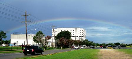 LSU Rainbow; photo courtesy Kathy Martello, Louisiana State University School of Dentistry