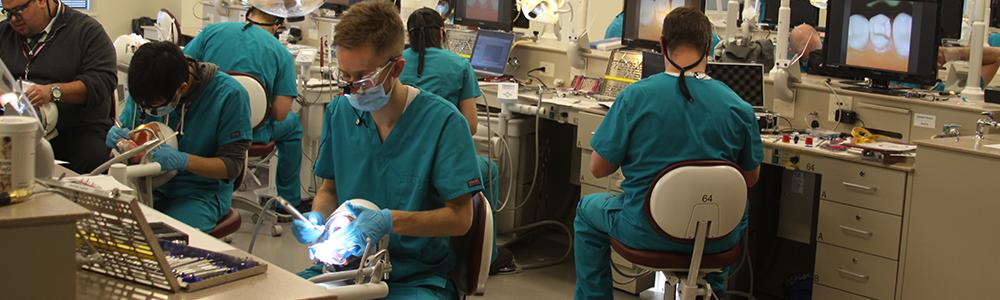 Getting into dental school : GoDental